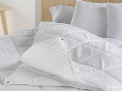 chinches de cama