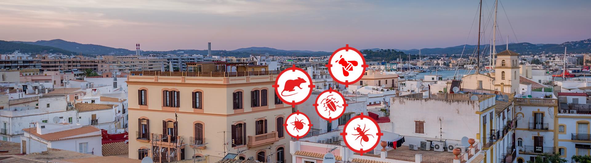 control de plagas en barcelona